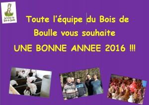 Bonne annee 2016 2